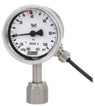 Fluidix Indicating Pressure Switch Gauge